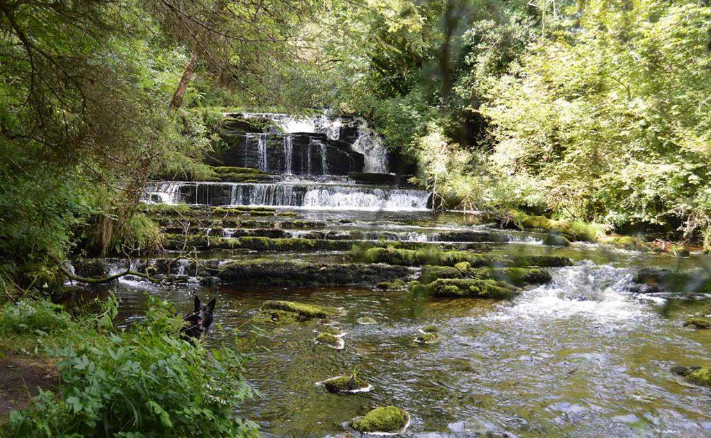 Fowleys Falls Leitrim
